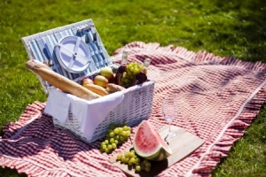 15245399 - picnic time  backer with food in garden